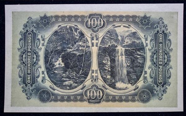 Una banconota da redord ritrovata per caso tra vecchi documenti: eccone lo scenografico retro dedicato alla natura d'Australia