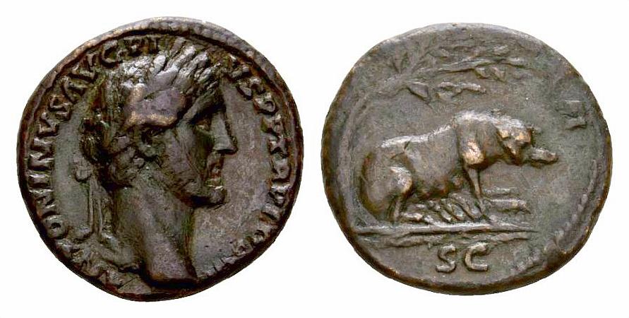 Asse di Antonino Pio, zecca di Roma, 143-144 d.C., al R/ Scrofa che allatta, RIC III 733