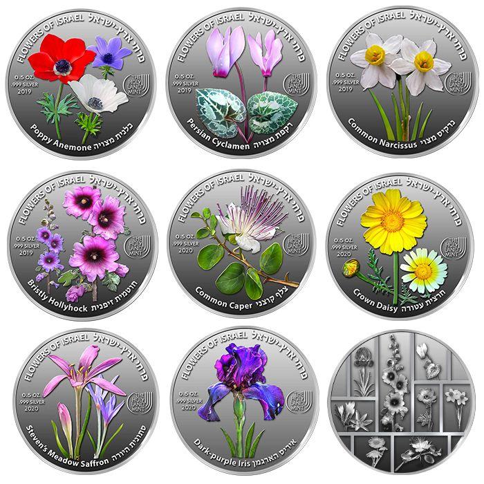 Ecco le nove varietà di fiori tipici di Israele e la loro elegante cromia sulle nuove medaglie