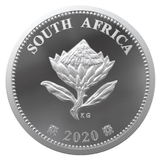 La protea, il fiore nazionale del Sudafrica sul dritto dei 2 centesimi e mezzo di rand