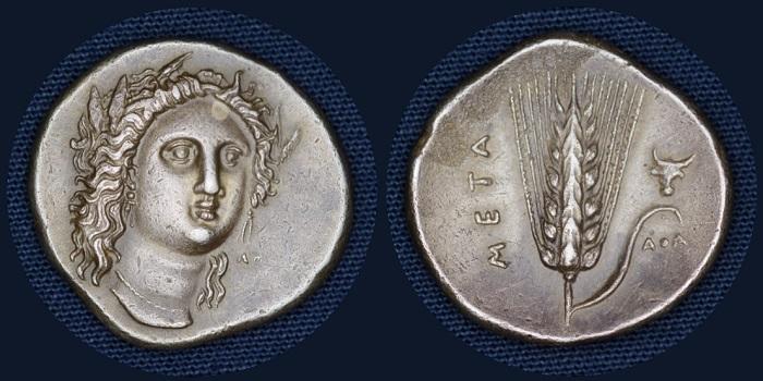Tesori dal Monetiere di Palazzo Blu: nomos o statere, Metaponto (Lucania) 330-290 a.C. (argento mm 21 g 7)
