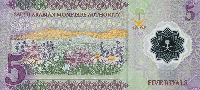 Se il fronte della prima banconota polimerica saudita omaggia il re e l'industria petrolifera, il retro mostra un verdeggiante paesaggio campestre