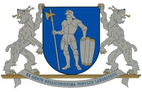 Lo stemma della regione etnografica lituana di Dzūkija nella sua versione originale a colori